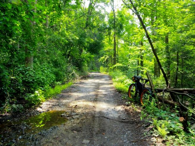Dirt road in West Virginia