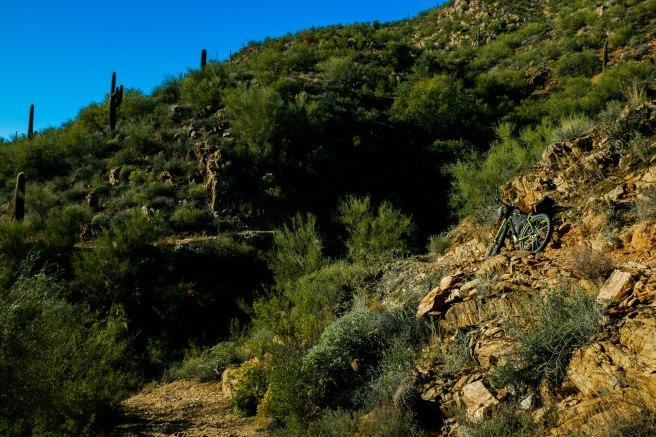 151218_Sedona-Black Canyon_HR-31