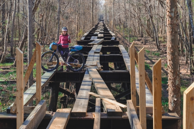 Railroad Tracks And Raccoon Trails Across America South Carolina